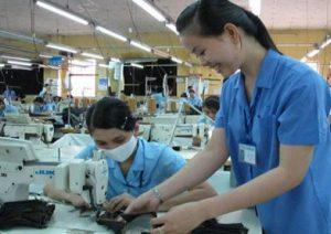 Cung ứng lao động phổ thông tại Bình Phước
