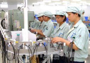 Cung ứng lao động tại HCM của Hưng Thịnh Phú