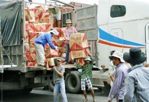 dụng dịch vụ bốc xếp hàng hóa Bình Dương