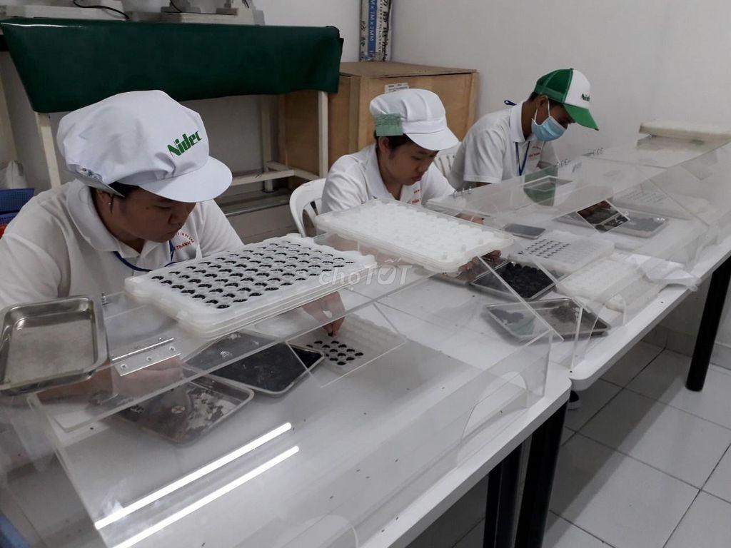 Các cách hay tuyển lao động phổ thông thời công nghệ số